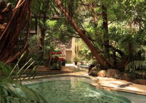 現存するジャングル風呂
