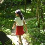 新緑が美しすぎる犬山市にある日本庭園「有楽苑」へ行ってきました